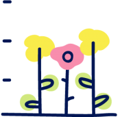 Rośliny średniej wysokości