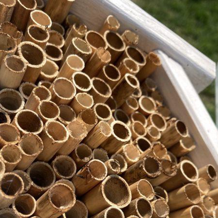 Domek dla pszczół murarek - biały zdjęcie 2