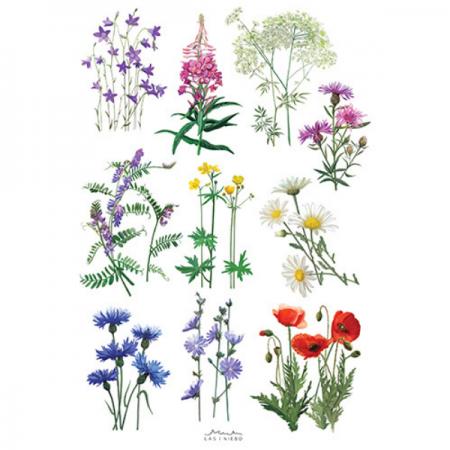 Tatuaże zmywalne Dzikie kwiaty zdjęcie 1