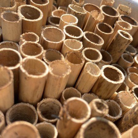 Domek dla pszczół murarek - naturalny zdjęcie 2